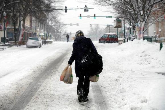 Bloomington Winter