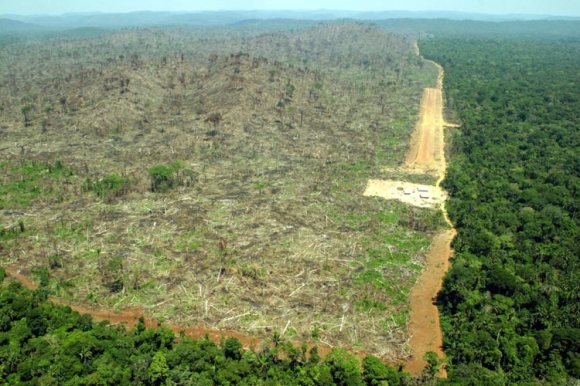 Amazon Deforestation